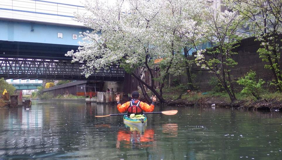 東京運河シーカヤック、スカイツリー