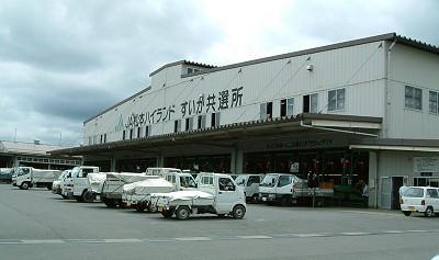 波田のスイカ共選所