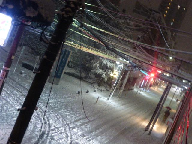 恵比寿雪-1
