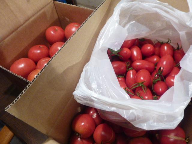 麗華トマト