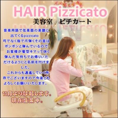HAIR Pizzicato由来
