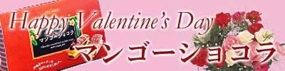バレンタインデーのプレゼント