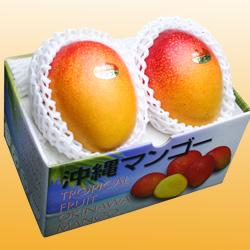 沖縄産アップルマンゴー2玉