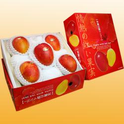 沖縄産アップルマンゴー5玉