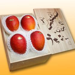 沖縄産アップルマンゴー大玉4個(桐箱)