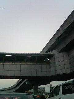 P1000477.jpg