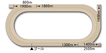 名古屋競馬場コース