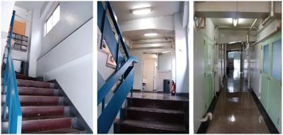 渡辺ビル 階段