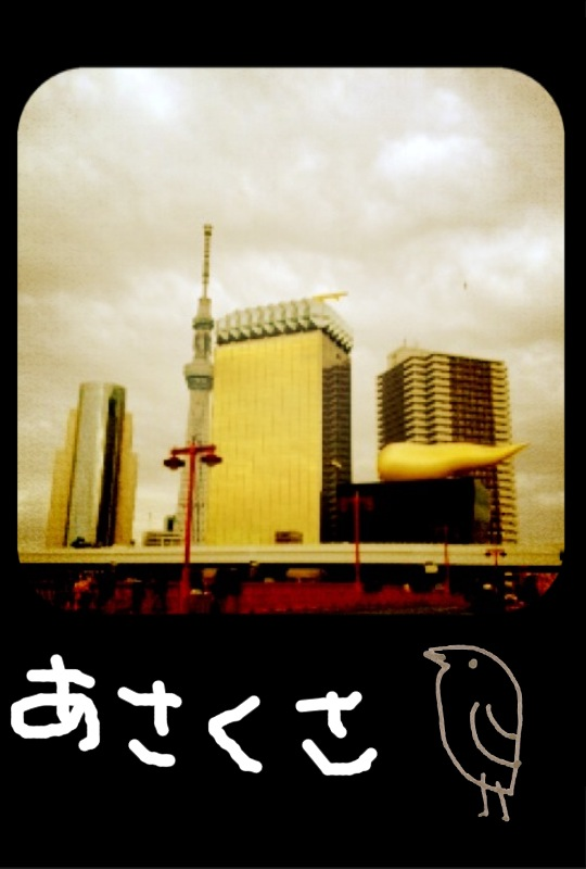 IMG_6447.jpg