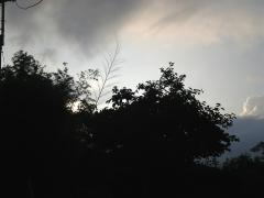 朝6時頃に叩き起こされるからこそ見られる風景です