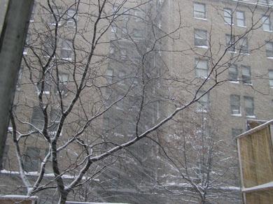2.12吹雪いてますぅ