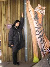 タイガーの身長
