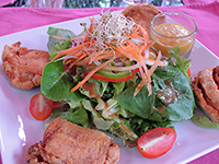DK Crispy Thai Chicken with Salad