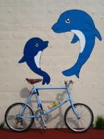 イルカとミニベロ7