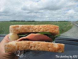 サンドイッチで昼食