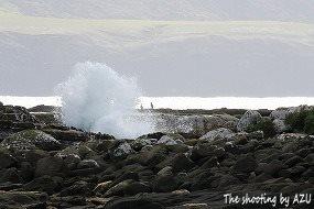 Curi Bayの海岸