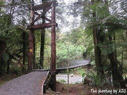 昨日の橋を渡って
