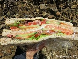 昼食のスモークサーモンサンド