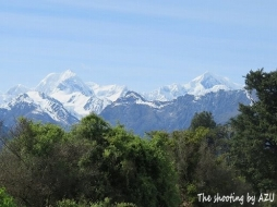 左Mt.Tasman(3497m).右Mt.Cook (3764m)