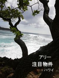ハワイ注目物件
