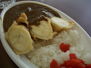302 熱川バナナワニ園 バナナカレー