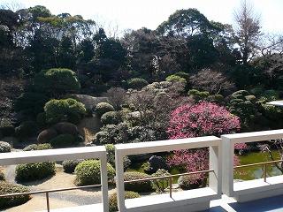 639 国際文化会館 庭園