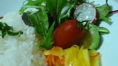 899 埜庵 野菜
