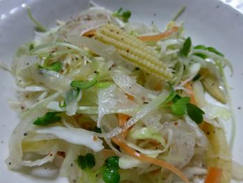 野菜シェイク5
