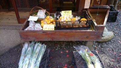売り物の野菜