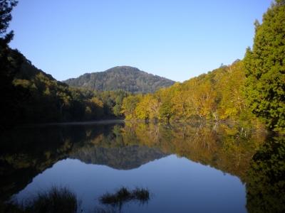 美しい志賀高原の紅葉や、