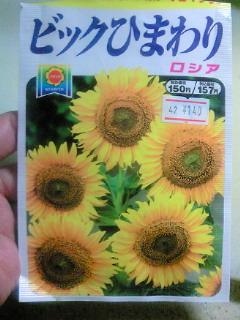 201109120308000.jpg