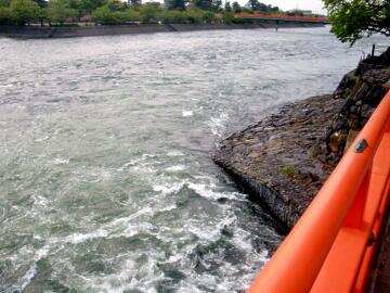 宇治発電所放水口