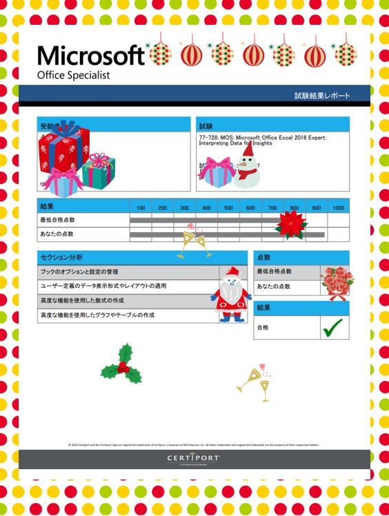 MOS Excel 2016 Expert 合格