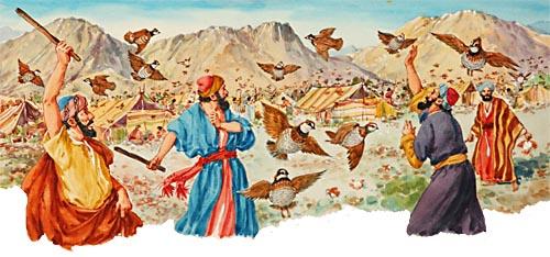 I-D-4 シンの荒野におけるうずらとマナ その1 | 聖書のお話ブログ BIBLE STORY BLOG
