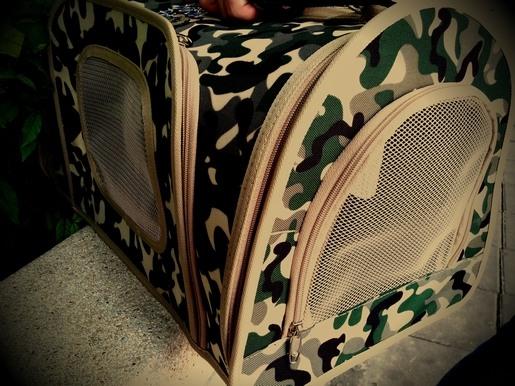 バンコク ペット 病院 キャリーバッグ