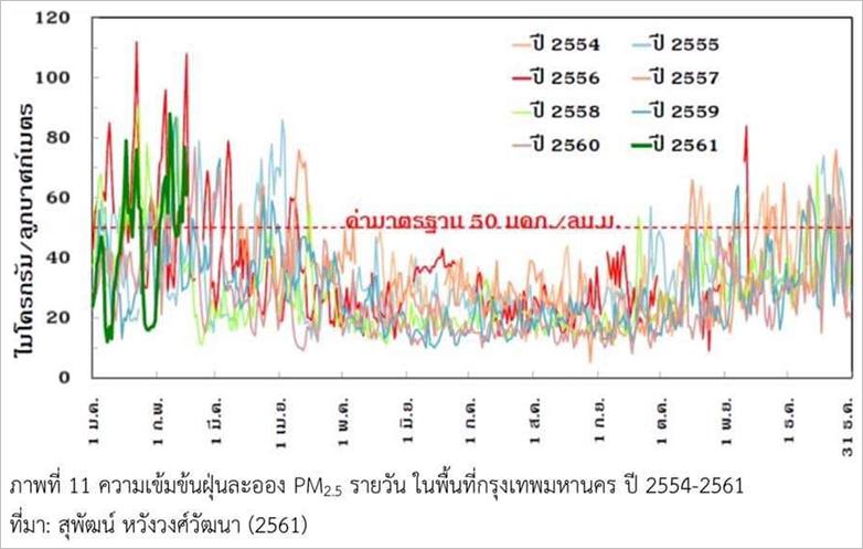 タイ PM2.5 N95 マスク 購入 バンコク