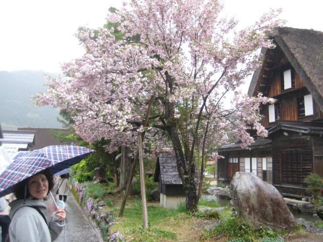 飛騨高山10