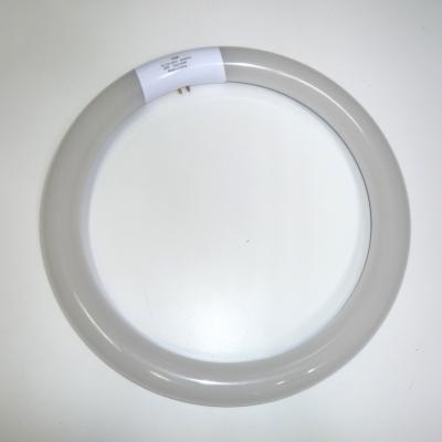 LEDサークライン1