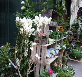パリのお花屋さん写真
