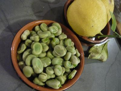 フランスのそら豆の盛り付け写真