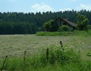 フランス田舎の風景1