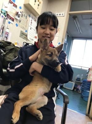 20171225広島市動物管理センター_171225_0019_0.jpg