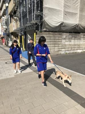 20180328広島市動物管理センター_180328_0011.jpg