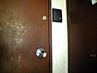 施工前ドア(室外)M様宅