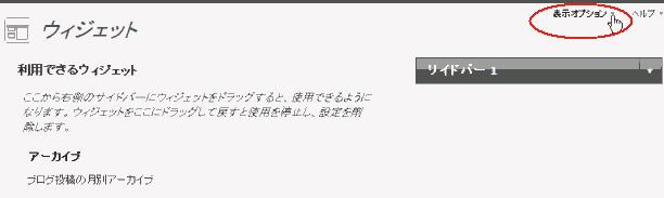 wordpress ウィジェット(表示オプション)