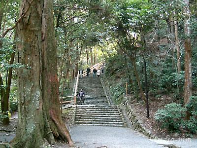 多賀宮への道