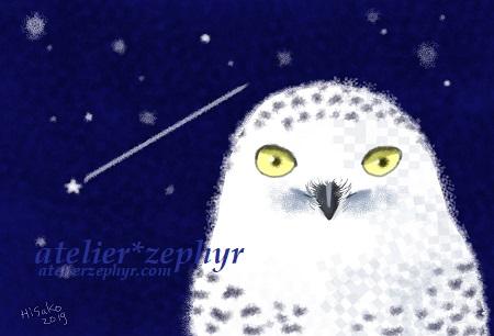 シロフクロウ 夜空 手描き風イラスト