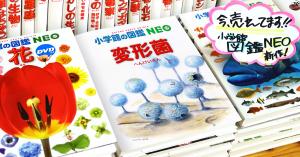 小学館図鑑NEOメーカーで作った変形菌の図鑑 仮想販売風景