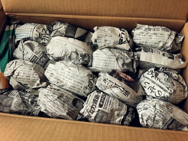 安納芋 保存