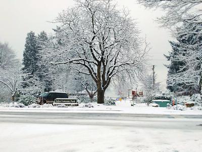 雪のバンクーバー 002